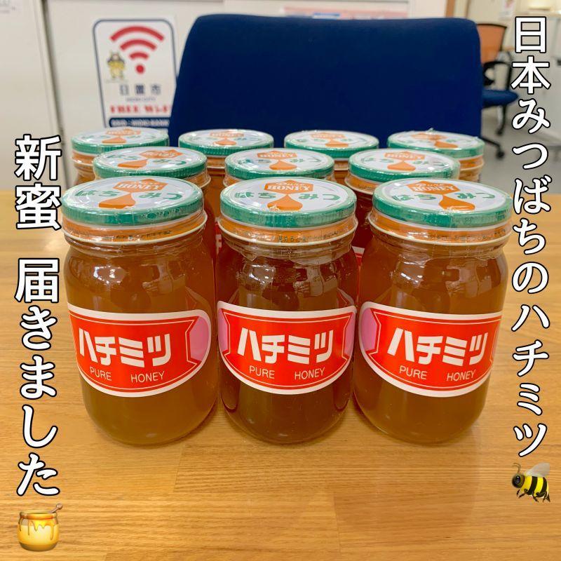 新蜜 入荷!日本ミツバチの純粋はちみつ